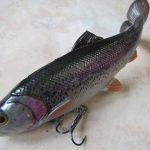 Un jour, un leurre : Le 4D Line Thru Pulse Tail Trout de Savage Gear