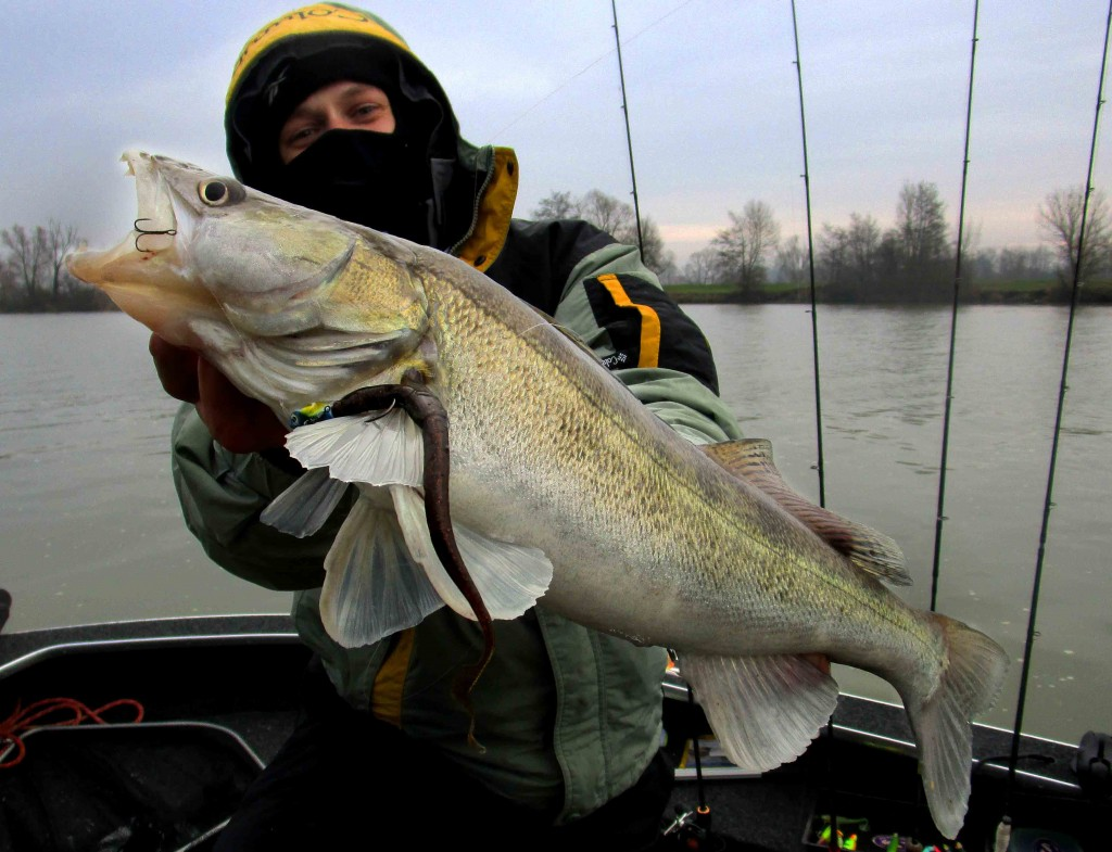 Esox-Froid Fish sur worm 25