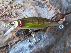 Great hunting flat side Megabass 45 (2)