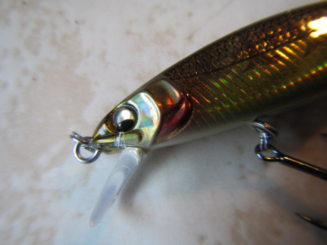 Great hunting flat side Megabass 45 (5)