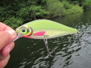 Super shadow rap rapala (3)
