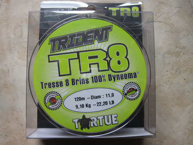 TR8 tortue (2)