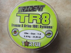 TR8 tortue (4)