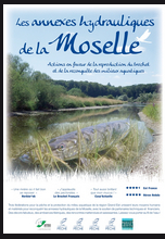 annexes Moselles 20 01 2017