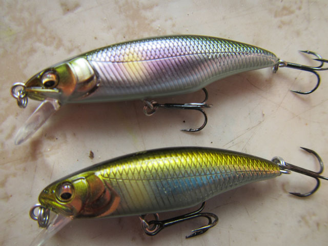 great hunting flat side megabass (2)