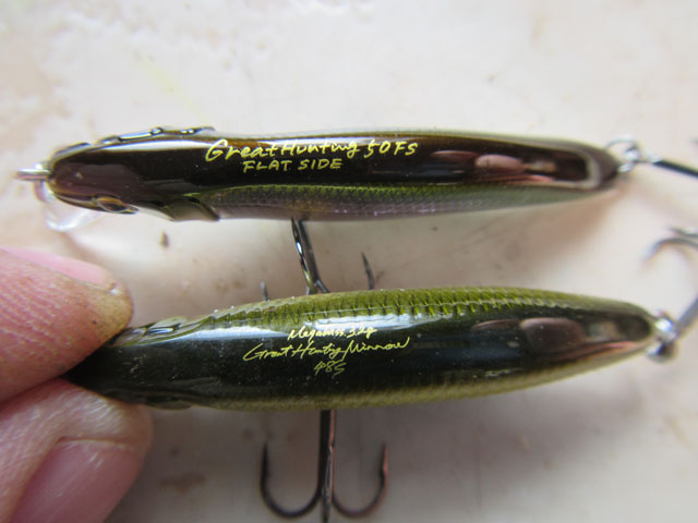 great hunting flat side megabass (3)