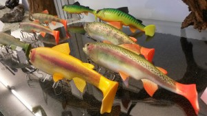 live-trout-swimbait2
