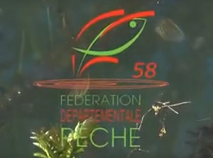 logo-fede-58-video