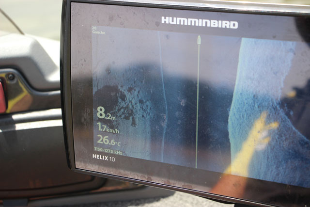 mega immaging humminbird (1)