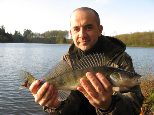 "avis sur la question ""quota poisson"" Sandre-42cm-martinet"