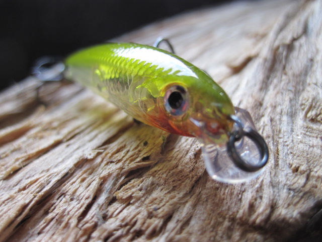ultra light minnow UV Rapala (4)