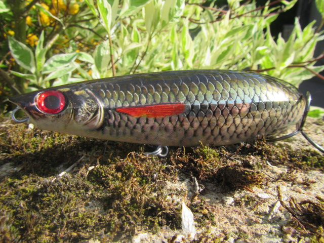 x rap scoop rapala (6)