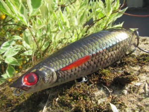 x rap scoop rapala (7)
