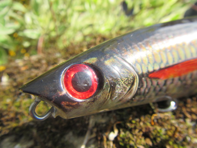 x rap scoop rapala (8)