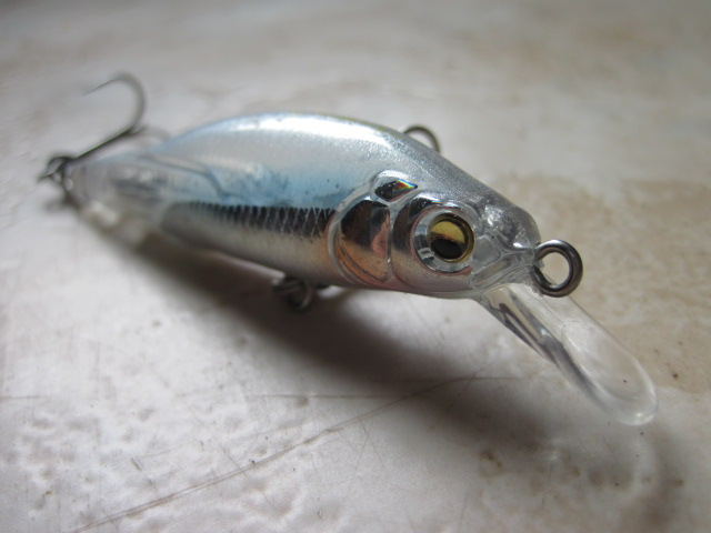 x80 junior megabass (3)