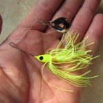 Un jour un leurre : le Micro King Spinnerbait de Strike King